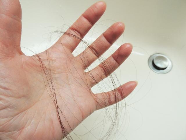 【女性のための育毛講座】育毛の手応えを実感するために 知っておきたいヘアサイクルのお話