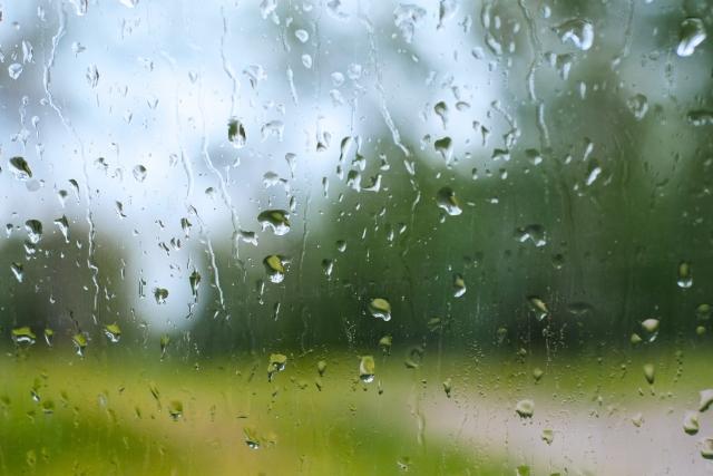 頭皮環境を悪化させる 湿度と気温の上昇に要注意!