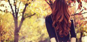 抜け毛の季節を乗り切る。秋の育毛強化マニュアル